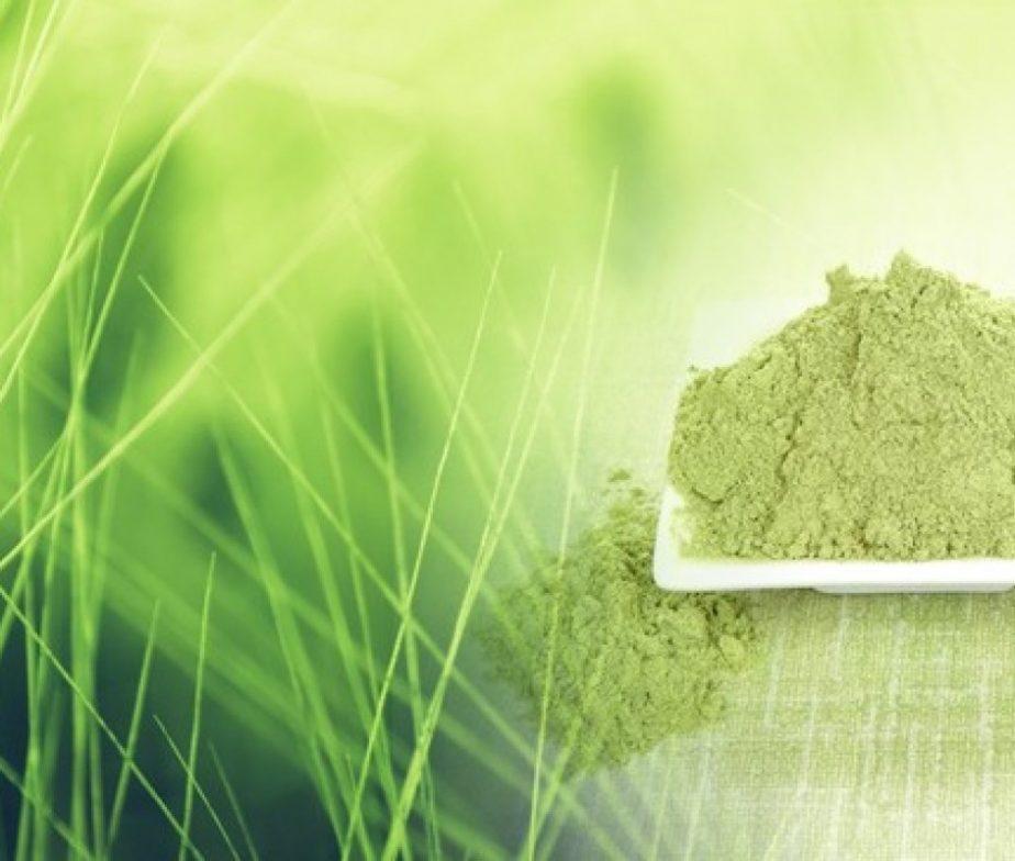 bionature-mlady-zeleny-jacmen-prasok-v-bio-kvalite-924x784