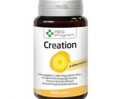 reg program creation 120 tabletiek