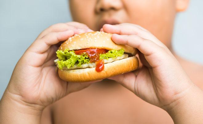 obezne dieta