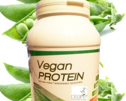 vegan-prot-final